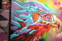 bird street art