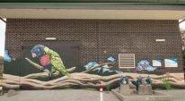 wall murals australia