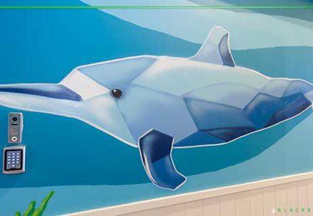 School wall murals Sydney