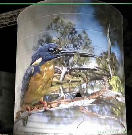 Dvate Rochester Silo kingfisher