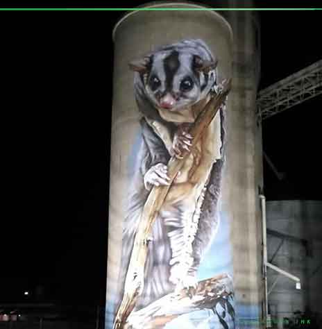 Sugar glider pained by Dvate in Rochester on Silo