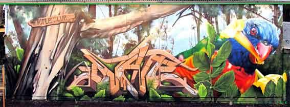 dvate melbourne graffiti artist lorikeet