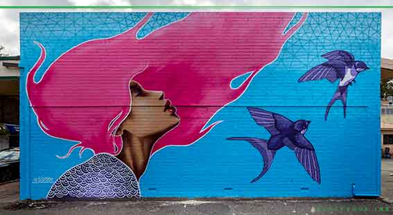 Leederville mural painted by sarsar