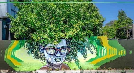 Paul Deej mural in Mt Lawley